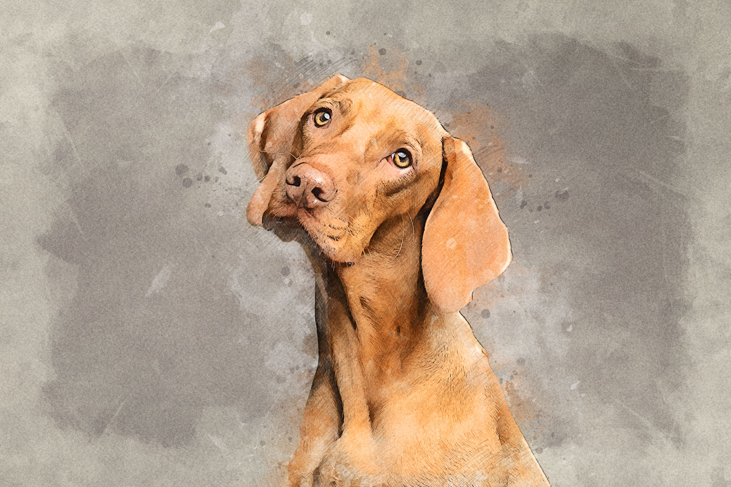 dog-3277416_quick_sketch_181127_1500x1000_a