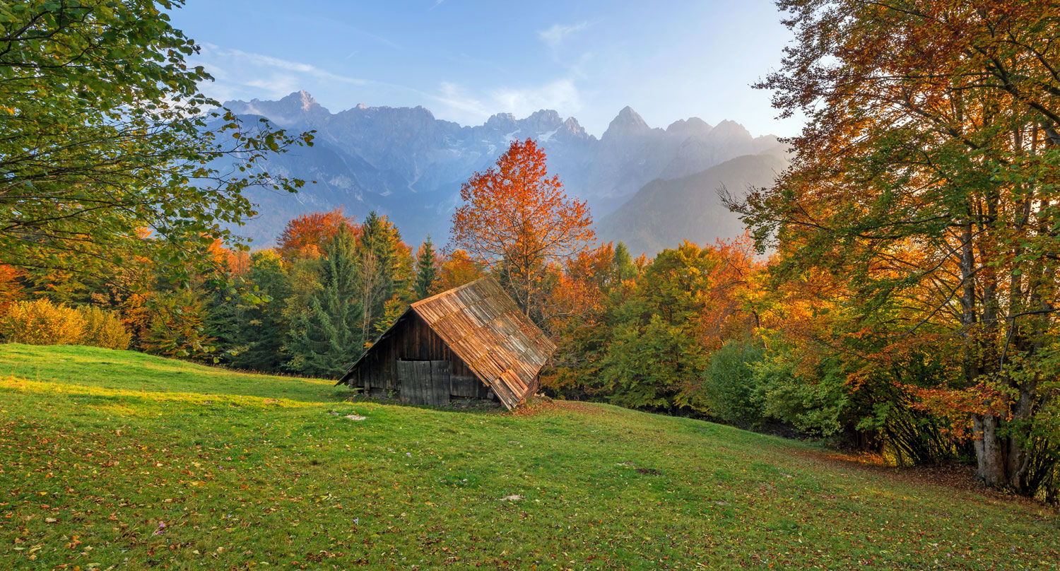 vrata-autumn-fall-1-45-3_painting_action_indw_1500x808